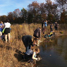 Students from the River Bend Community Math Center sample macroinvertebrates and measure pond dimensions to estimate macroinvertebrate populations.