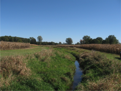 Preventing nutrient loss from Indiana farms: watershed-scale pairing of cover crops and the two-stage ditch
