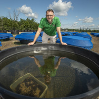 Similar pesticides show consistent effects on freshwater ecosystems